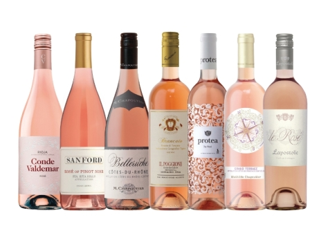 Terlato Wines - rose lineup photo - all 6 final